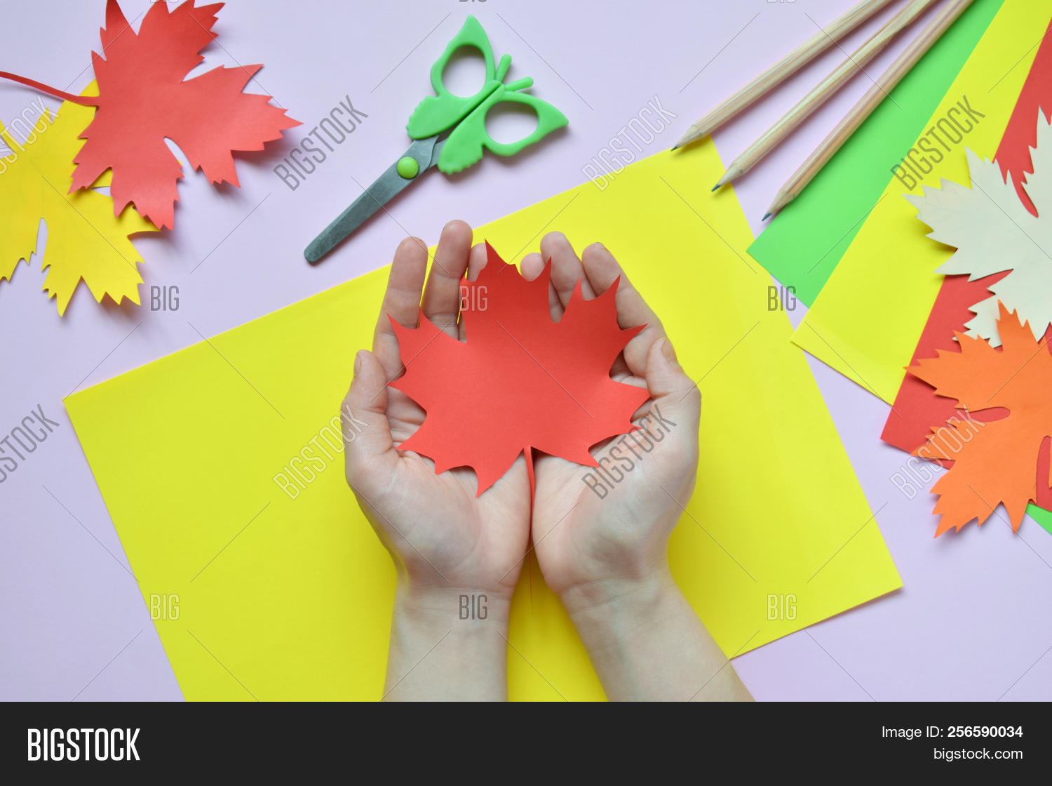 Making Maple Leaf Image & Photo (Free Trial) | Bigstock