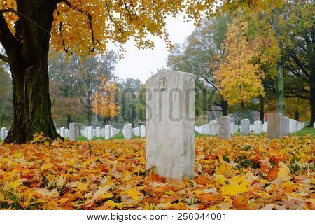 Tombstones in atumn - Arlington National Cemetery in Washington DC United States of America