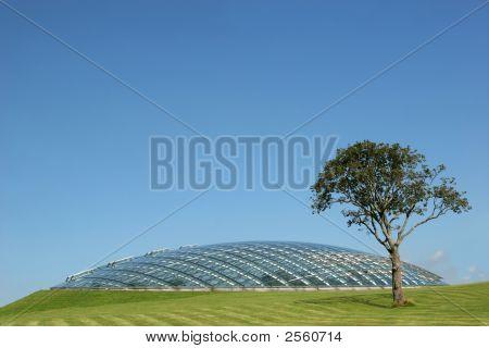 Futuristic Bio Sphere