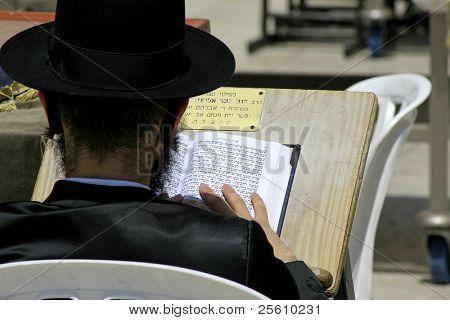 Hasidic jew reading the torah at the wailing western wall, jerusalem, israel