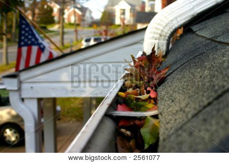 Fall Cleanup - Leaves In Gutter #2