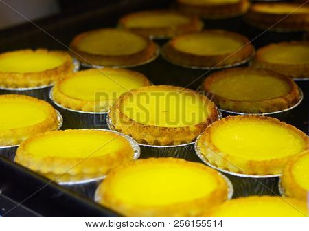 Hong Kong Egg Tarts From Local Food Shop
