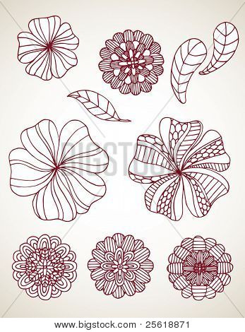 Line Drawn Flowers