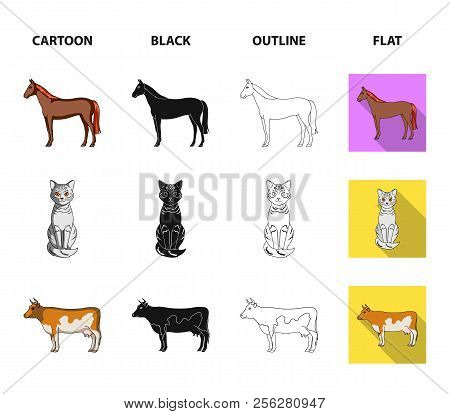 Horse, Cow, Cat, Squirrel And Other Kinds Of Animals.animals Set Collection Icons In Cartoon, Black,