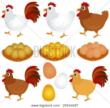 A colorful Theme of cute vector Icons : Chicken, Hen, Rooster isolated on white