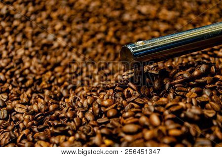Brown Coffee Beans Production Shot Background Concept