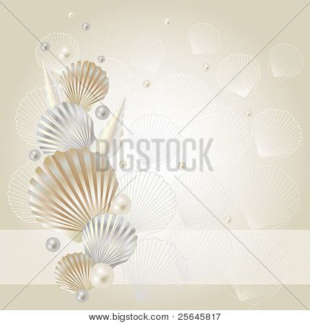 seashell and pearl background