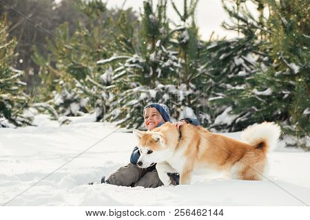 Christmas Happy Child Boy Running Playing With Akita Inu Dog On White Snow In Winter Day, Flying Sno