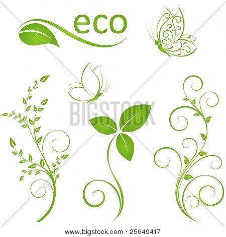Set of floral elements for design
