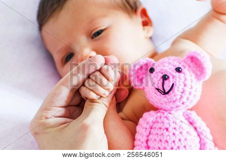 Father Holding A Tiny Hand With Fingers Of A Sweet Adorable Newborn Baby Girl With A Pink Teddy Bear