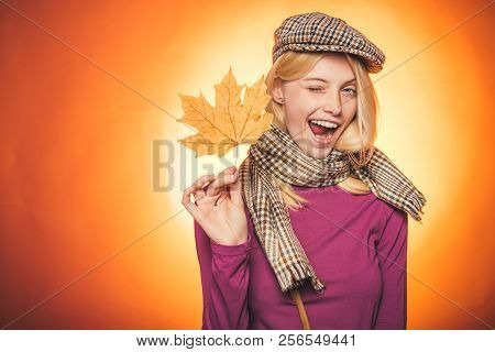 Autumn Is A Beautiful And Colourful Time Of Year. Autumn Celebrate. Hello Autumn And Autumn Dreams.