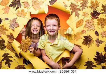 Advertising Agency. Place For Your Text. Gold Background. Autumn Leaves Festival. Hello Autumn And A