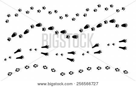 Paw Vector Foot Trail Print Of Dog, Cat, Bear, Rabbit Set. Silhouette Animal Diagonal Tracks For T-s