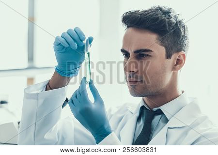 Young Scientist Doing Research In Laboratory. Male Researcher Wearing White Coat And Protective Glov