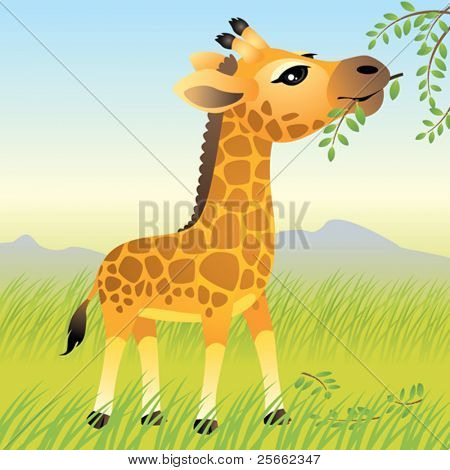 Baby Animal collection: Giraffe
