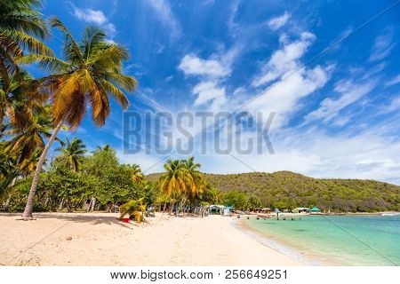 Idyllic tropical beach with white sand, palm trees and turquoise Caribbean sea water on Mayreau island in St Vincent and the Grenadines
