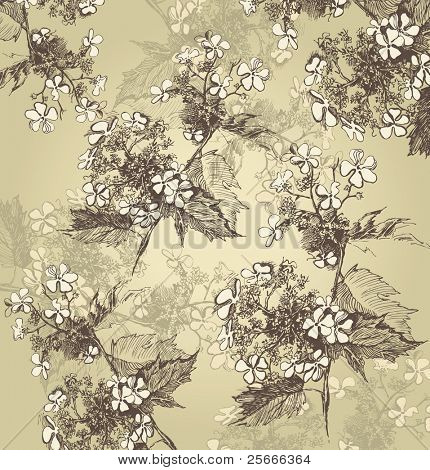 background with hand drawn guelder roses poster