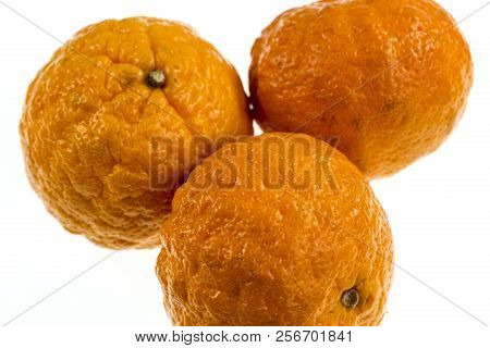 Gold Nugget Is A Mandarin Variety, Medium In Size, Oblate In Form With A Bumpy Orange Rind. The Fles