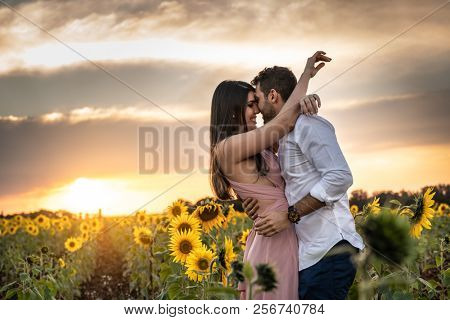 Romantic Couple on a Love Moment in a Sunflower field