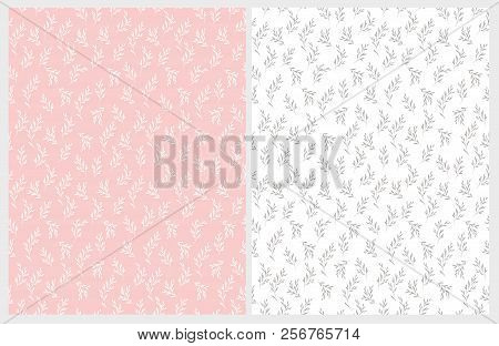 Hand Drawn Floral Vector Patterns. Light Pink And White Backgrounds. Tiny White And Gray Delicate Tw