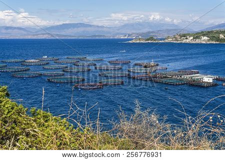 Aquaculture in a bay on the Greek island of Corfu poster