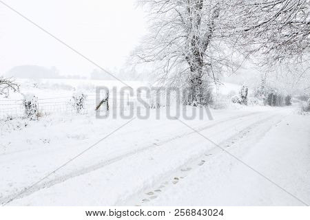 English Countryside In Winter With A Rural Road, Tree And Fields Covered In Snow