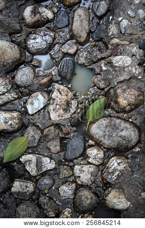 Stone Floor. Old Stone Floor with water and green tree leaf. background and textures. wet floor. wet rocks.