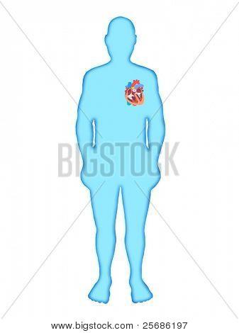 Silhouette man heart medical anatomy