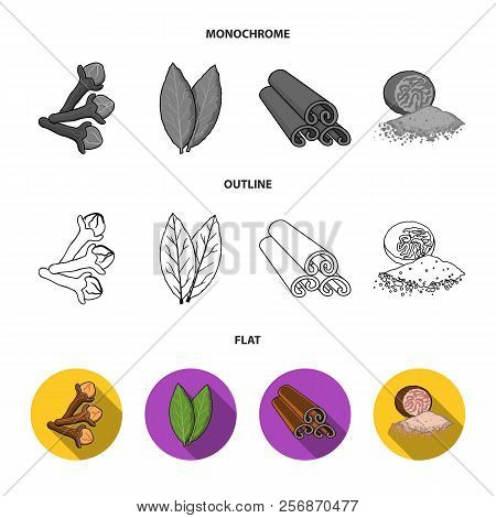 Clove, Bay Leaf, Nutmeg, Cinnamon.herbs And Spices Set Collection Icons In Flat, Outline, Monochrome