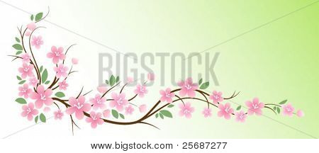 Vector sakura branch
