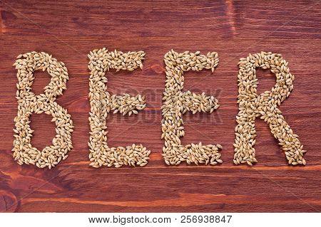 The inscription of beer by malt grains on wood background. Craft beer brewing from grain barley malt. Ale or lager from pale or dark pilsner malt. poster