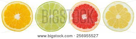Collection Of Citrus Fruits In A Row Orange Lemon Slices Sliced Isolated On White