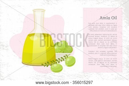 Glass Vessel Contains Liquid Inside, Amla Oil. Indian Gooseberries And Branch With Leaves Near Glass
