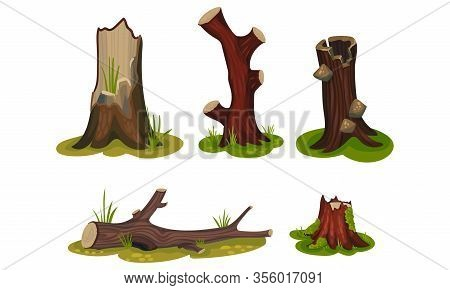 Old Hollow Stubs And Moss-covered Stumps Standing On Green Patch Vector Set