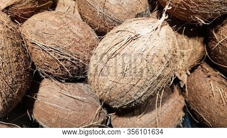 A Pile Of Coconuts In The Food Market. Macro Photo Of Tropical Fruit Coconut. Texture Hairy Nuts Coc