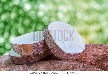 Cassava Tubers Fresh Sliced On Bokeh Natural Background, Pile Cassava Manioc In Top View, Yucca Root