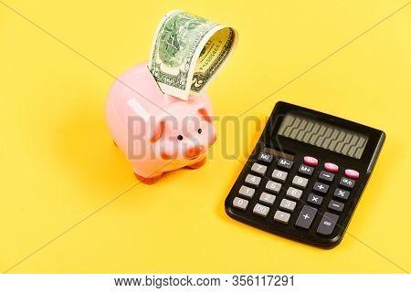 Piggy Bank Pig And Calculator. Credit Debt Concept. Economics And Profit Management. Economics And F
