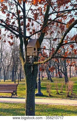 Beautiful Little Wooden House In The Park For Birds. The Early Spring Morning In Saint Volodymyr Hil