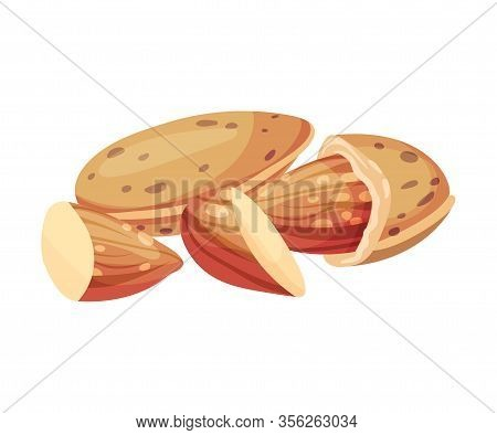 Whole Almond Kernel With Broken Nutshell Vector Illustration. Organic Food Ingredient
