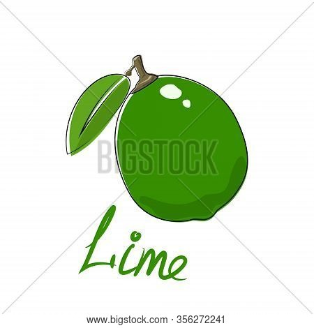 Citrus Green Lime And Text Lime, Tropical Fruit Isolated On White Background, Vector Illustration