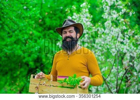 Eco Farm. Farmer Works In Garden. Farmer Hold Box. Spring Farming. Man Farmer. Bearded Man Preparing