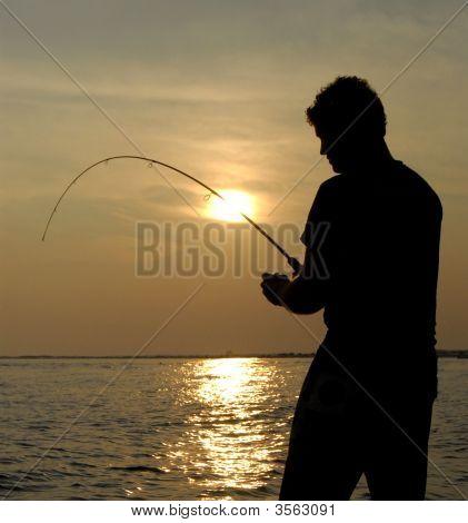 Desembarque do peixe