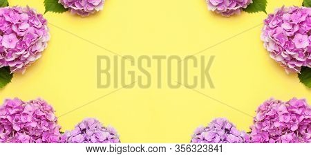 Frame Of Beautiful Flowers Of Pink Hydrangea On Yellow Background Top View Flat Lay Copy Space. Flow