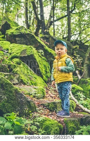 Toddler Boy Hiking In Mountains, Family Adventure. Little Child Walking In Rocky Green Forest, Smili
