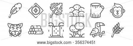 Set Of 12 Jungle Icons. Outline Thin Line Icons Such As Leaves, Jungle, Trunk, Trunk, Leaf, Compass