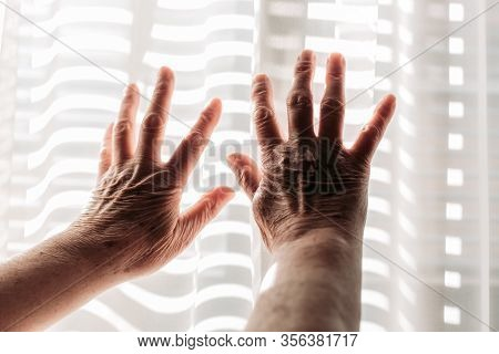 Elderly Woman Hands On The Light. Rheumatism, Arthritis