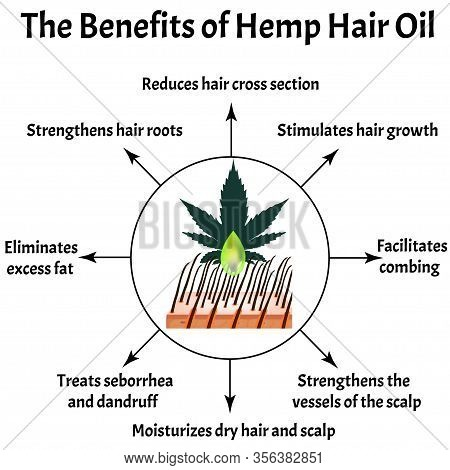 The Benefits Of Hemp Hair Oil. Marijuana Icons Cbd. Cannabinoid Logo. Marijuana Leaves. Hemp Oil. In