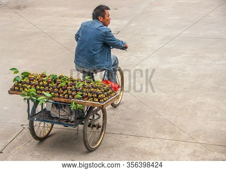 Guilin, China - May 10, 2010: Downtown. Man In Jeans Garb On Tricycle Transports Large Tray Full Of