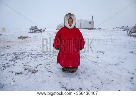 A Resident Of The Tundra, Indigenous Residents Of The Far North, Tundra, Open Area, Little Girl In N