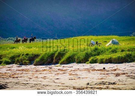 Gimsoya, Norway - July 17, 2018: Horseback Riding In Lofoten Gimsoys.